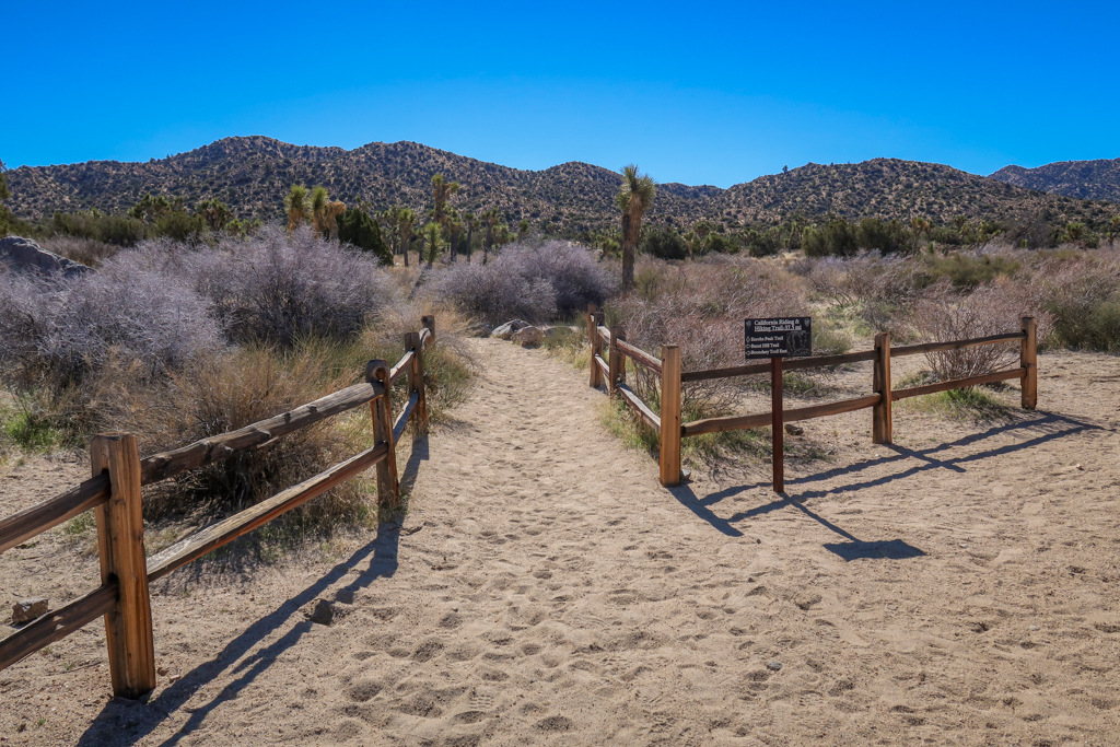 Trail junction with the California Riding & Hiking Trail and the Black Rock Trail, including a trail sign