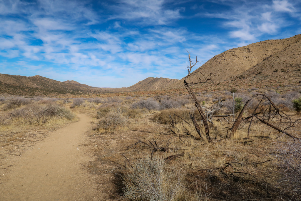 Trail leads through a high desert plateau with mountains in the distance