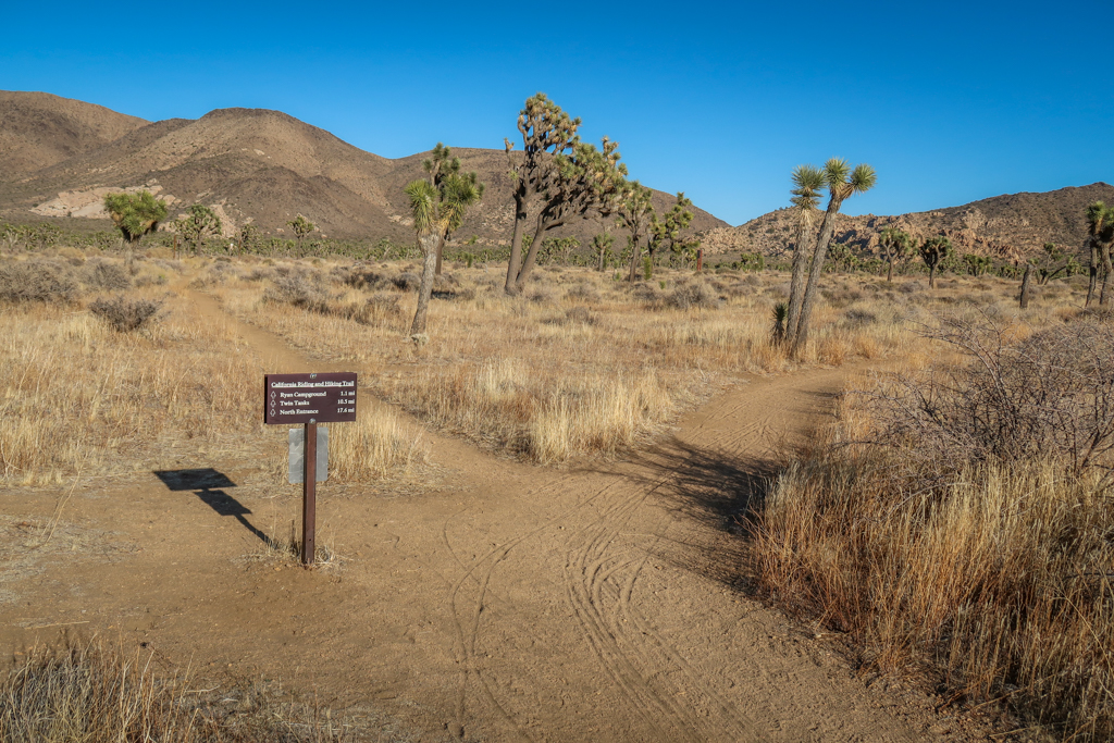 Trail junction for Juniper Flats. Includes a trail sign mileage information.
