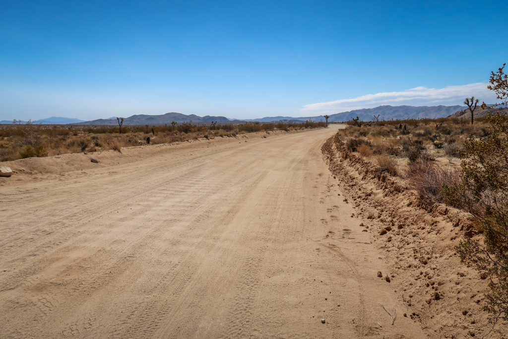 A bumpy dirt road with washboarding in Joshua Tree National Park