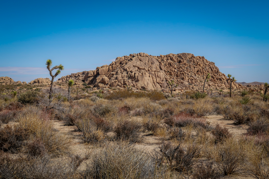 Jumbo Rocks -a large rock formation comprised of what looks like smooth boulders jumbled into a large pile located between Geology Tour Road and Twin Tanks