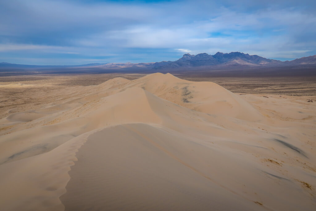View from the top of the Kelso Dunes Trail