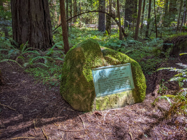 Mahan Plaque reads: Laura Perrott Mahan 1867-1937 | James P Mahan 1867-1937 | Pioneers in the Save-the-Redwoods League. The California State Park Commission has dedicated to their memory this site where on Nov 19 1924, Mr and Mrs Mahan discovered that logging had begun and led the movement that resulted in the saving of this grove.
