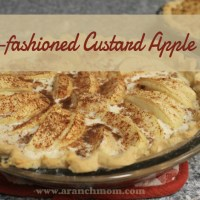 Old-Fashioned Custard Apple Pie