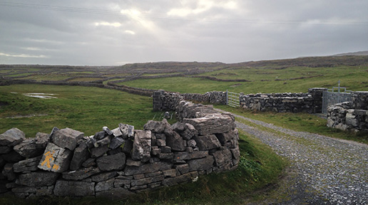 The stone walls along Inishmore's main road. Photo: Arkell Weygandt