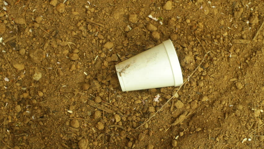 Student Opinion: The World Should Stop Making Plastic Foam