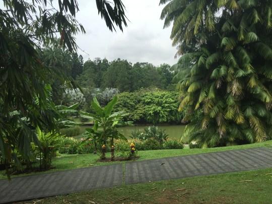 sd1-botanic-lake