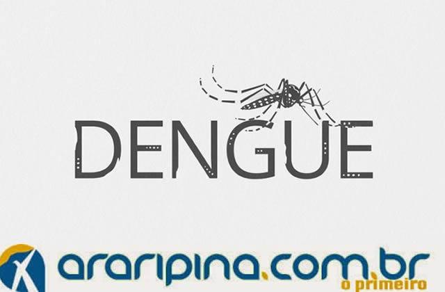 Dengue já matou 13 pessoas este ano, em Pernambuco