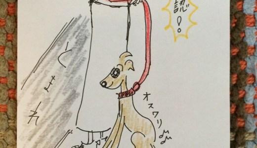 しつけ|お散歩・お出かけ出発してからの事【犬の育て方 vol.22】
