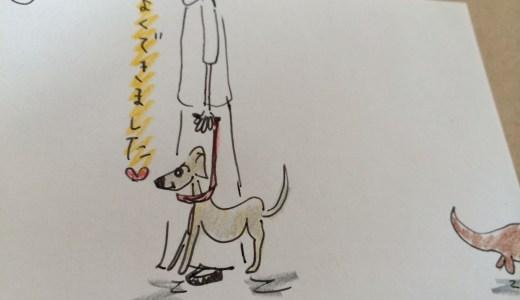 しつけ|吠える癖・鳴き声別2|犬に吠える【犬の育て方 vol.26】