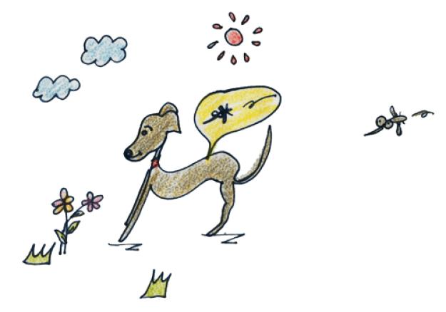 季節ごとの健康管理|春は狂犬病予防接種|ノミダニ予防|フィラリア予防|換毛期【犬の育て方46巻】