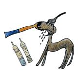 犬のグルーミング|シャンプー・お風呂【犬の育て方 vol.52】