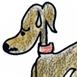 症状から解る犬の病気|下痢・血便【犬のしつけ・犬の育て方 vol.62】