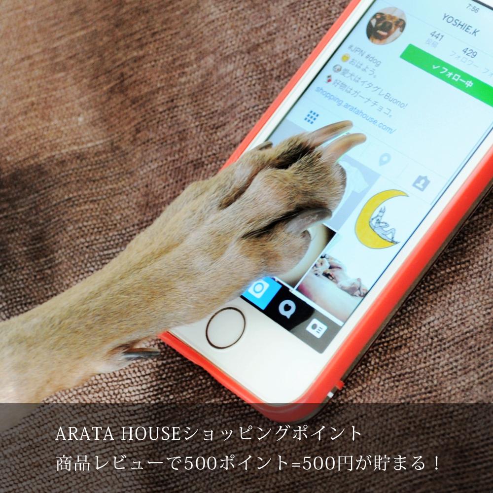 ARATA HOUSEショッピングポイント|商品レビューで500ポイント=500円が貯まる!