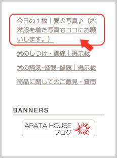 着画を投稿して下さい〜♪|ARARTA HOUSE掲示板スタート