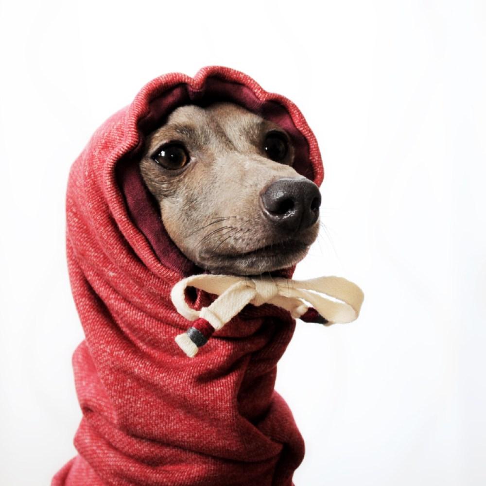 イタグレ服、ミニピン服、ウィペット服、サルーキ服、犬服・犬寝袋・雑貨の通販|イタグレ・ウィペット犬服|お耳ぬくぬくスヌード&ネックウォーマー|選べる3カラー(ポピーレッド/桜色/イタグレグレイ)