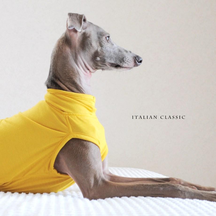 犬服 Italian Classic イタリア製ストレッチ天竺ニット 選べる4タイプ×3カラー(Blue/Gray/Yellow)