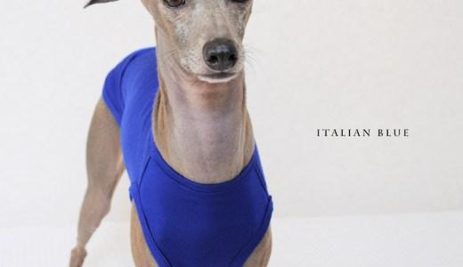 「新作犬服」上品な生地だからこそ、シンプルに仕上げる|Italian Blue|イタリア製ストレッチ天竺ニット