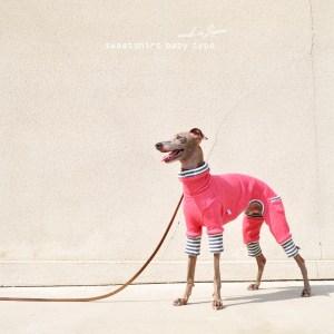 「新作犬服」人気のトレーナーシリーズにbabyタイプが登場!! 犬服 トレーナー babyタイプ 選べる4タイプ×3カラー(ホワイト/グレイ/ピンク)
