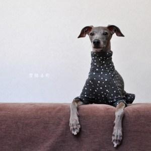 犬服|雪降る町|接結ニット|選べる4タイプ×3カラー(ライトグレイ/ダークグレイ/ネイビー)