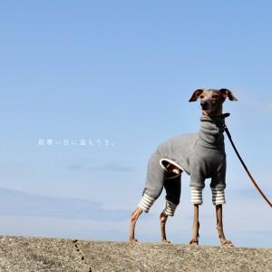 ありのままの犬服屋さんでありたい。 犬服 肌寒い日に温もりを。 裏起毛ボンバーヒートニット(保温) 選べる4タイプ