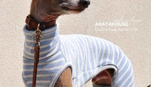 9月の犬服