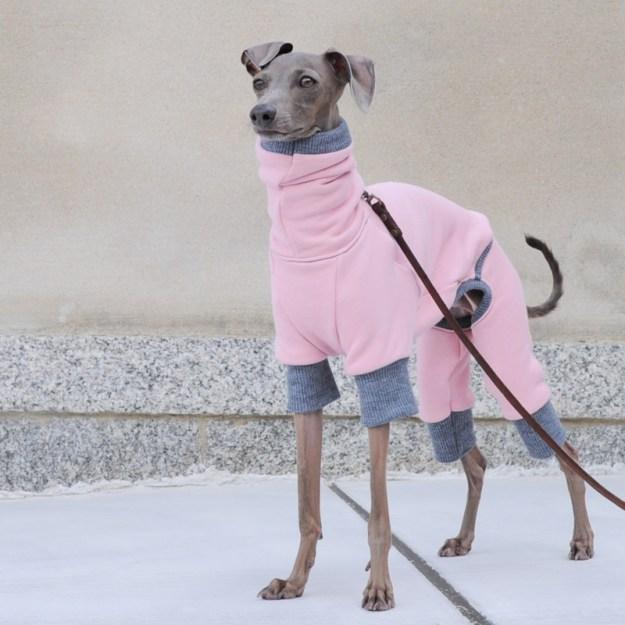 イタグレ・ウィペット犬服|ロンパース|トレーナー|選べる3カラー(ポピーレッド/桜色/イタグレグレイ)
