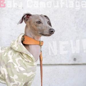 新作犬服「Baby Camouflage」と、夏の新着アイテム&人気アイテム特集