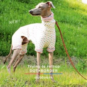 「ロールアップしよう♪」をテーマに新作の犬服を作りました|スチュエーションに合わせてお洒落を楽しもう♪