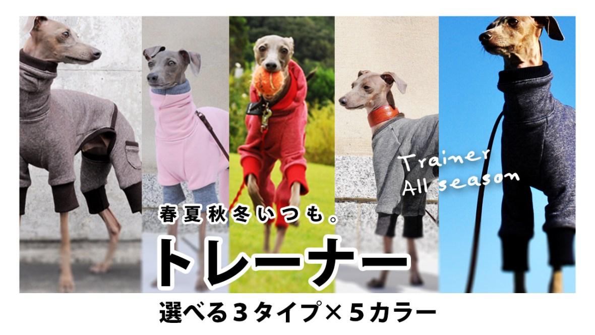 イタグレBuono!も年中着てる「トレーナー」全5色入荷しました!動画公開中「春夏秋冬いつも。トレーナー」