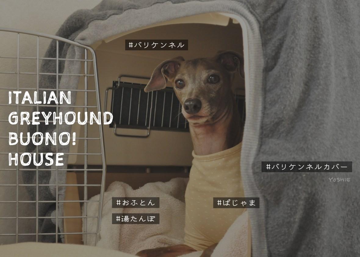 災害時の犬の居場所を用意していますか?|【保温・保湿効果抜群!冬も快適な犬の寝床の作り方】クレートカバーの使い方