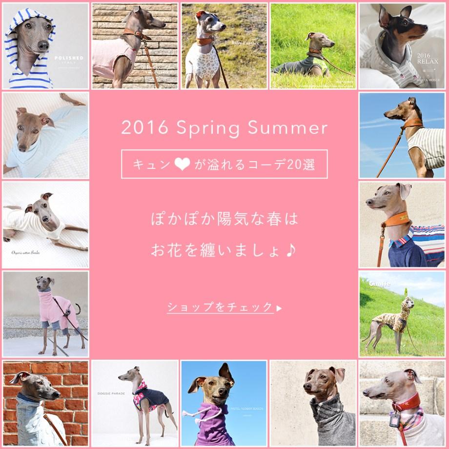 「2016春の犬服」ぽかぽか陽気な春はお花を纏いましょ♪「キュン♡が溢れるコーデ20選」