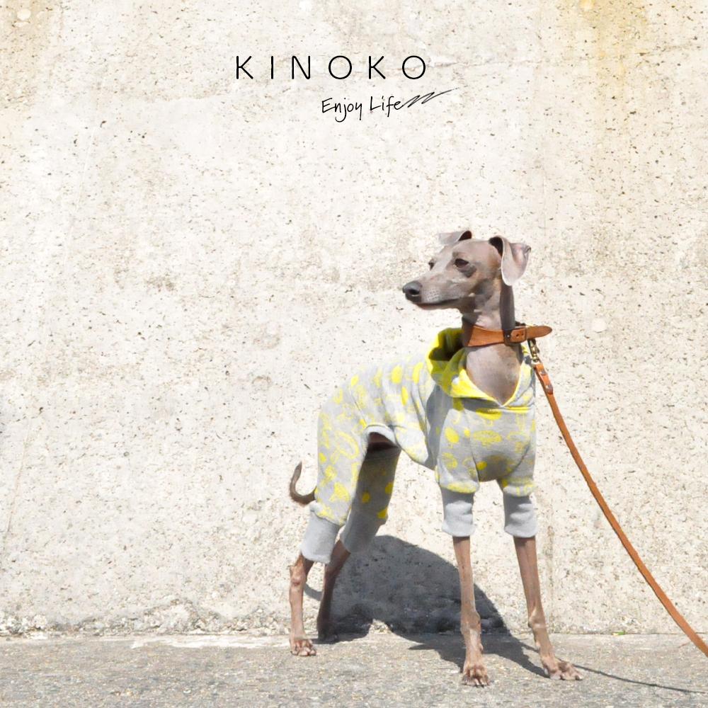 犬服 KINOKO ジャガードニット 選べる4タイプ×3カラー(Yellow/Green/Navy)