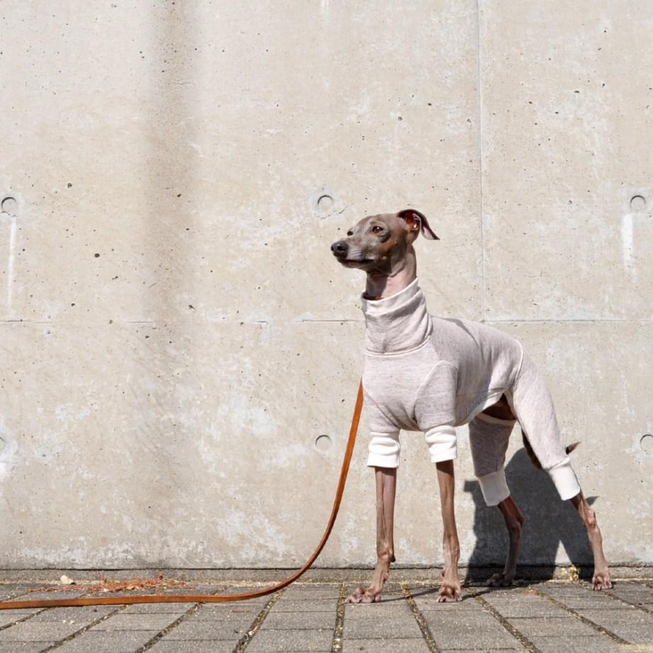 「新作犬服」シンプルで可愛らしい「ミラノリブ」のお洋服 ミラノに魅せられて