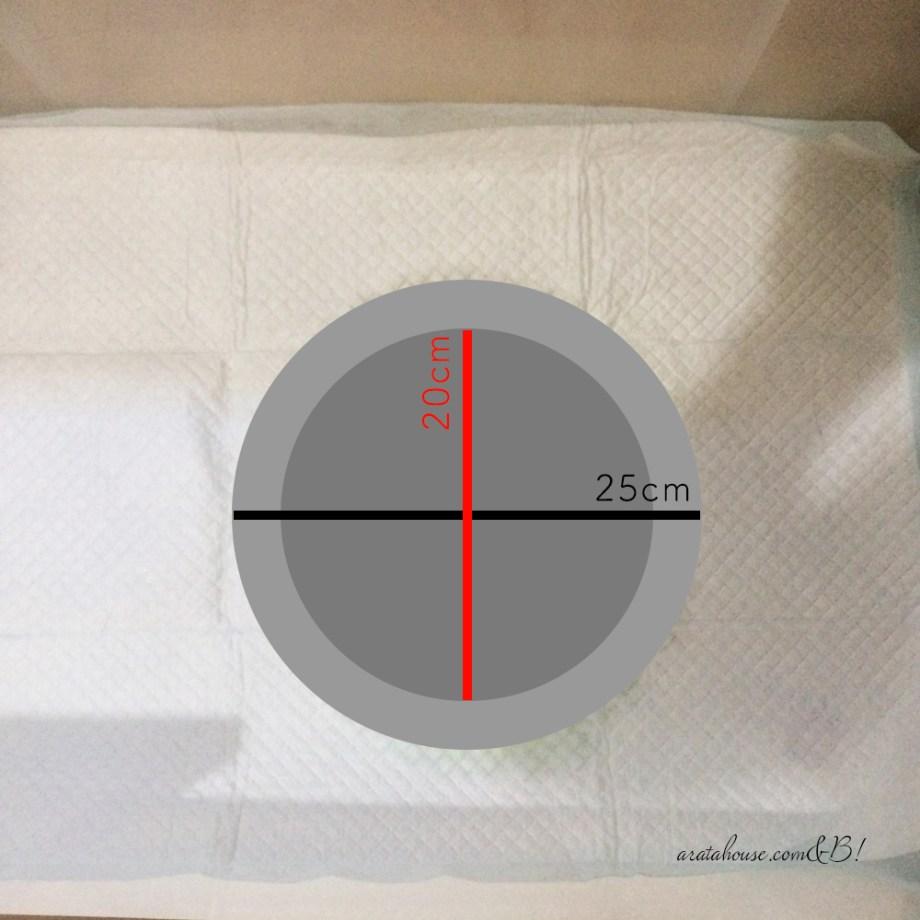直径20cmのおしっこの量から知る健康状態「イタグレBuono!の体重を測ってみた」体重推移記録グラフ