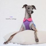 「イタグレ/ミニピン新作犬服」私が作る。|Colorful Collage|選べる4タイプ×自由に選べる配色(ピンク×パープル×ブルー)