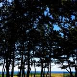 「淡路島の暮らし」七輪を持って海辺で気軽にのんびり、そんな気分。
