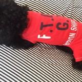「一からの犬服作り5」仮縫い&フィッティング「ロンパースはお尻周りの形状が大切」