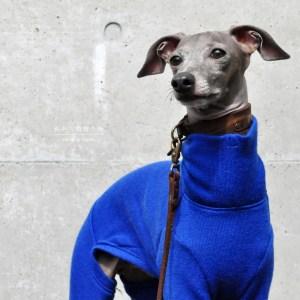 犬服 私からの贈り物 日本製メリノウールリバーニット 選べる4タイプ×3カラー(グレイ/ブルー/パープル)