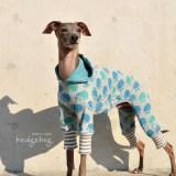 「新しい組み合わせに挑戦」犬服|ハリネズミ|日本製ジャガードニット 新登場