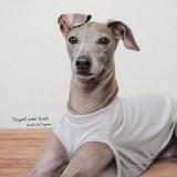 シンプルに着るほど美しさが引きたつ犬服|ロイヤルウールニット