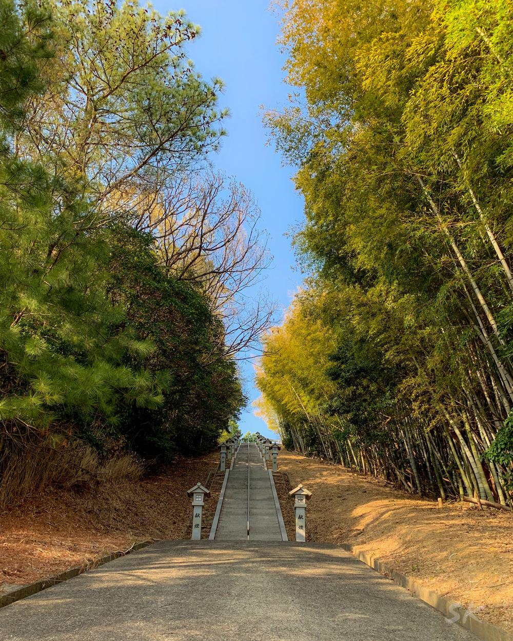 軽トラに乗る農家のお婆ちゃんに教えてもらった淡路島の桜の名所