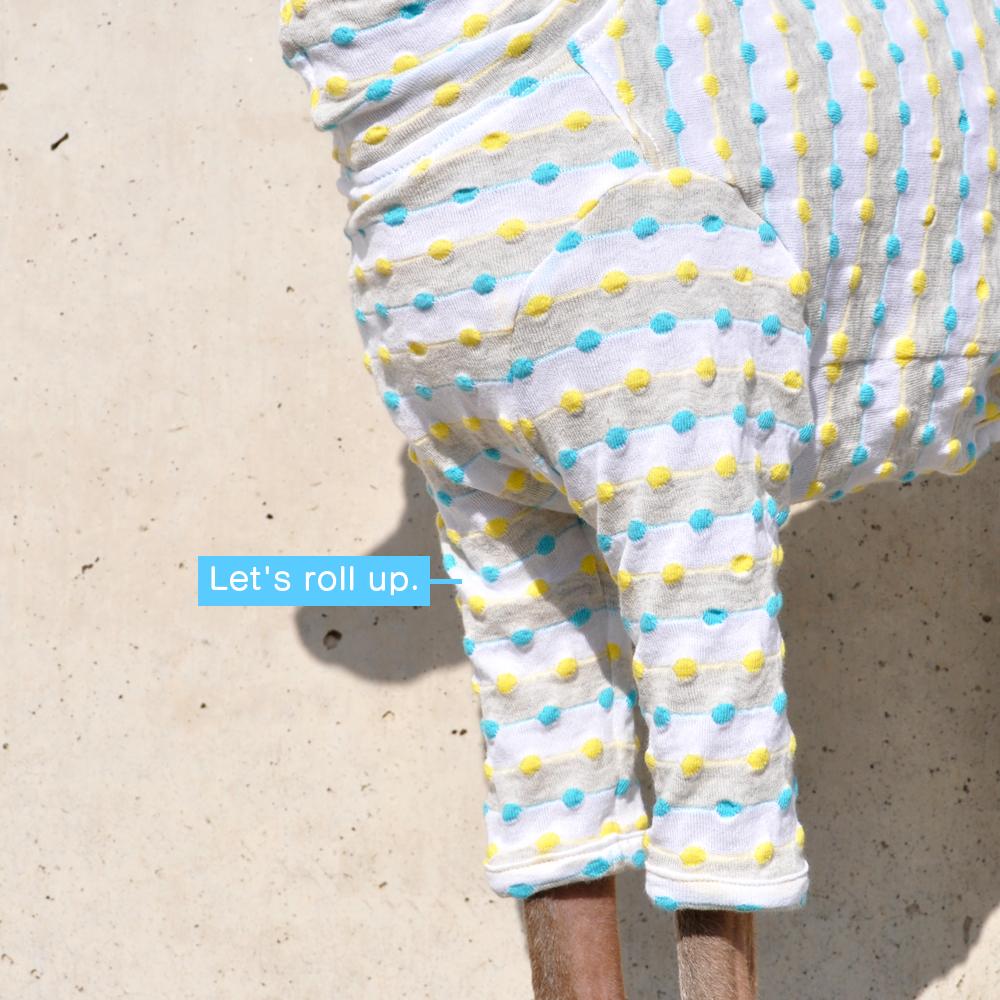 イタグレ服|ミニピン服|ウィペット服|チャイクレ服|サルーキ服|犬服|ロールアップしよう♪ポップなドット|日本製ポップドビーボーダーニット|選べる4タイプ×2カラー(イエロー&ブルー/レッド&グリーン)