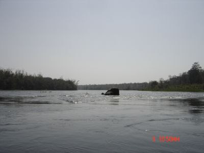Dandeli… White water rafting!!!!