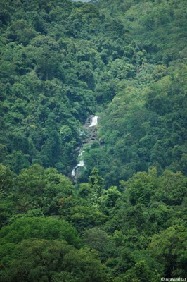Waterfalls of Agumbe