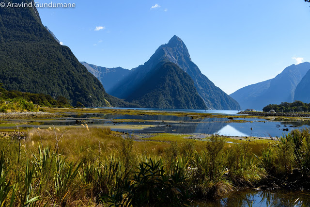 New Zealand day 6: Milford Sound