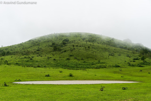 A heaven in western ghats