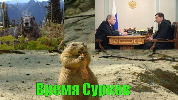 Время Сурков