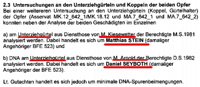 dna_seyboth_stein