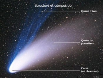 cometes structure et composition